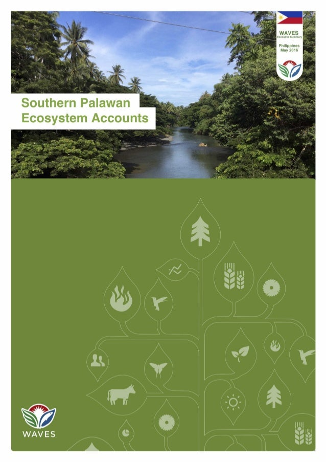 Southern Palawan Ecosystem Accounts