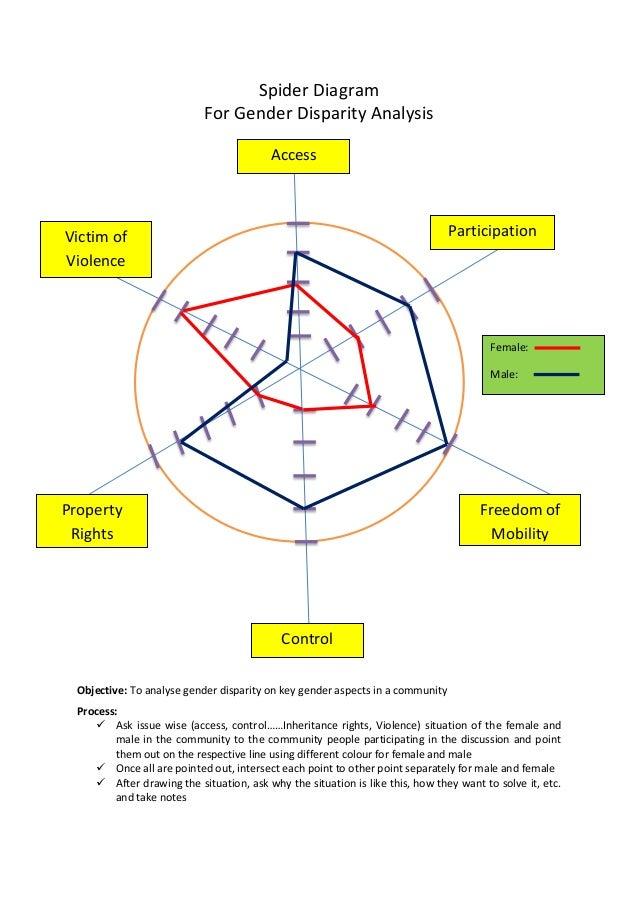 Spider Diagram For Gender Analysis