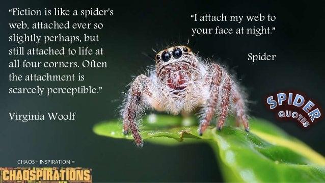 Spider Quotes