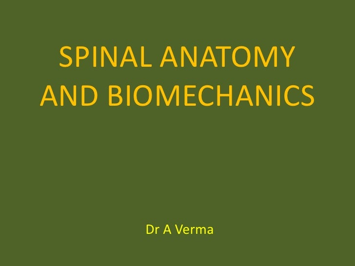 Spinal Anatomy And Biomechanics