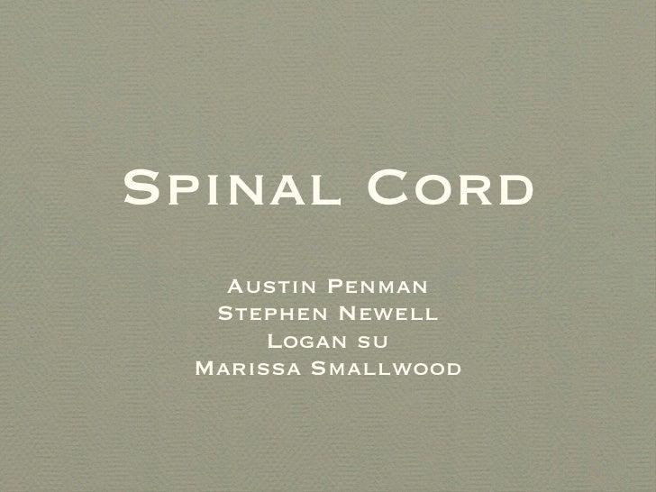 Spinal Cord <ul><li>Austin Penman </li></ul><ul><li>Stephen Newell </li></ul><ul><li>Logan su </li></ul><ul><li>Marissa Sm...