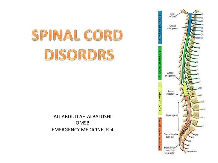 SPINAL CORD <br />DISORDRS<br />ALI ABDULLAH ALBALUSHI<br />OMSB<br />EMERGENCY MEDICINE, R-4<br />