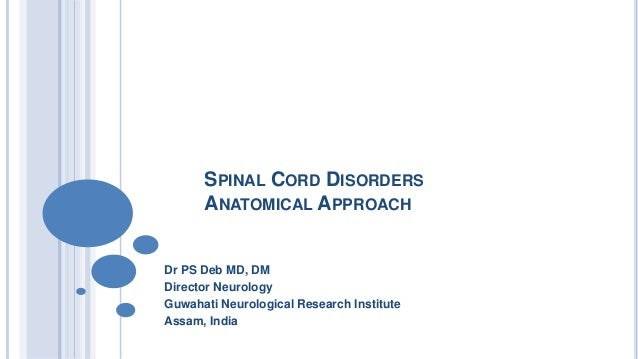 SPINAL CORD DISORDERS ANATOMICAL APPROACH Dr PS Deb MD, DM Director Neurology Guwahati Neurological Research Institute Ass...