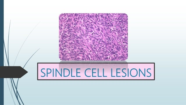 SPINDLE CELL LESIONS