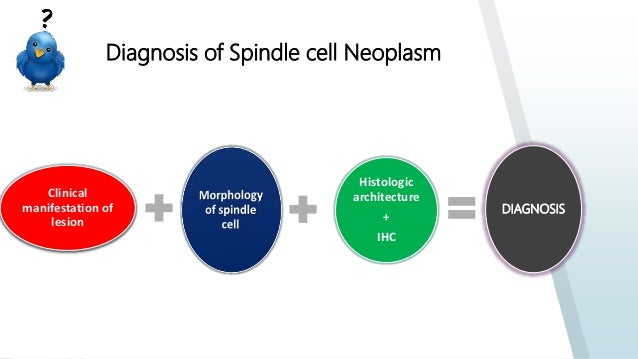Spindle cell lesions of head & neck