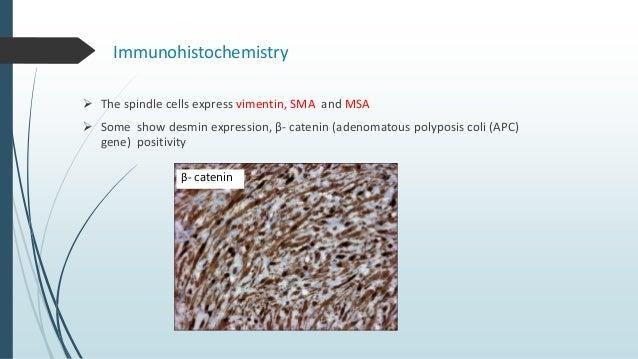 Radiographic Differential diagnosis  Odontogenic cysts  Odontogenic tumors  Malignancy arising from bone.  Fibrosarcom...