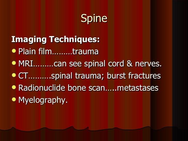 radiology spine 1 dr ameer