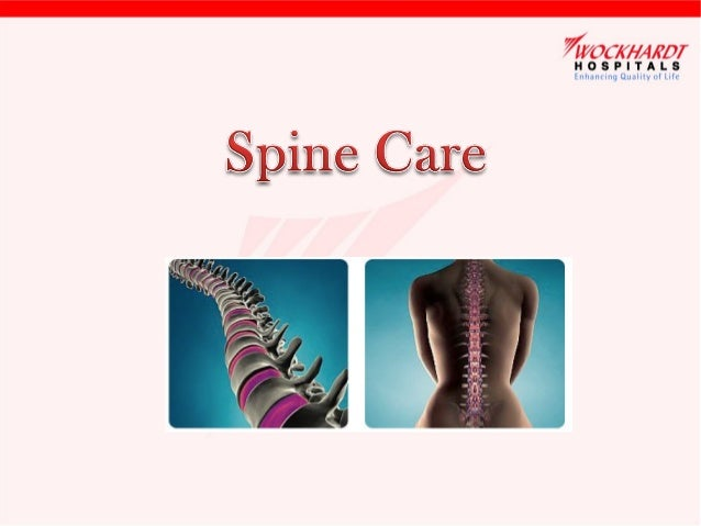 Understanding Human Spine •  It is the column stretching down the midline of the trunk from the base of the skull to the p...