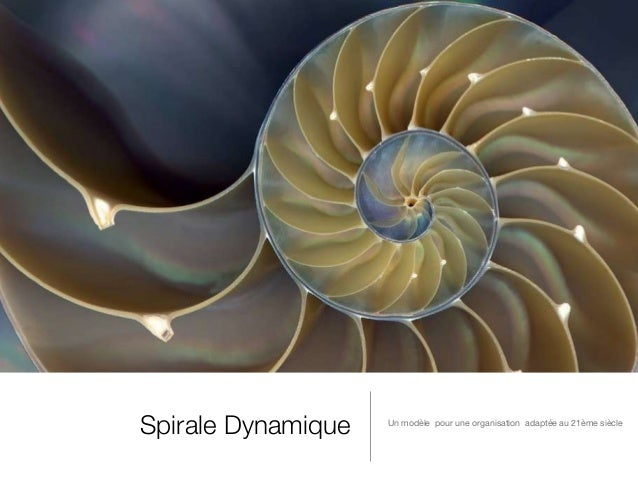 Spirale Dynamique Un modèle pour une organisation adaptée au 21ème siècle