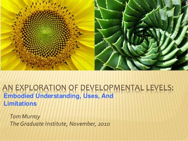 AN EXPLORATION OF DEVELOPMENTAL LEVELS: Tom Murray The Graduate Institute, November, 2010 Embodied Understanding, Uses, An...