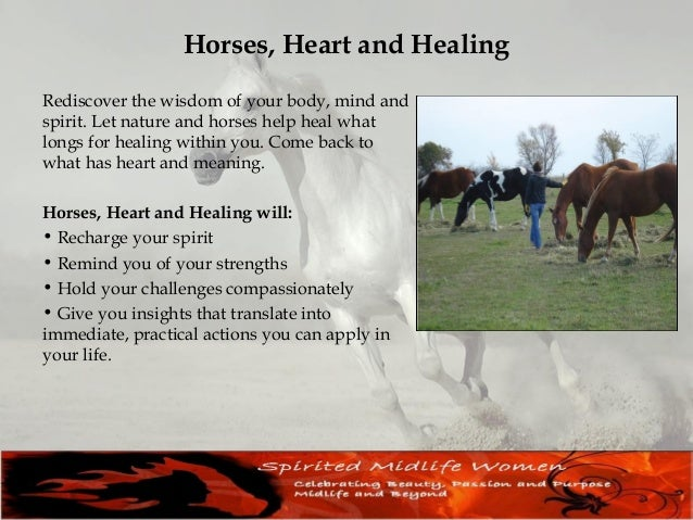 Professional Development Lynn teach, coach and mentor budding and seasoned professionals in the field of Equine Guided Coa...