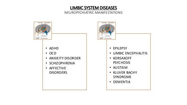 LIMBIC SYSTEM DISEASES NEUROPYCHIATRIC MANIFESTATIONS • ADHD • OCD • ANXIEITY DISORDER • SCHIZOPHRENIA • AFFECTIVE DISORDE...