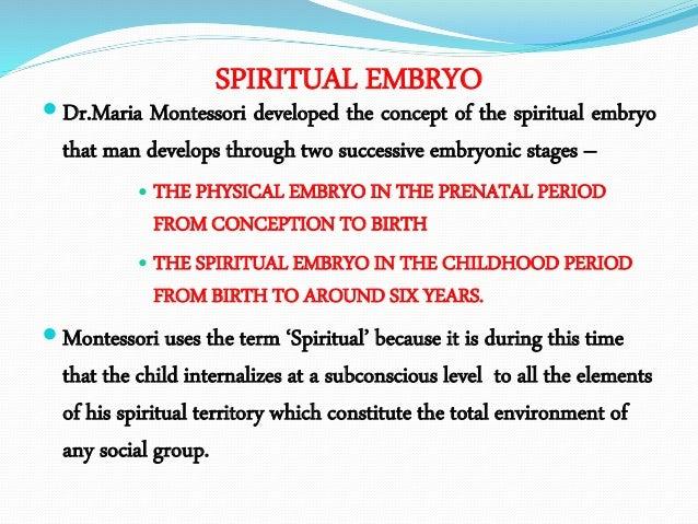 Spiritual embryo essay saas homework 3