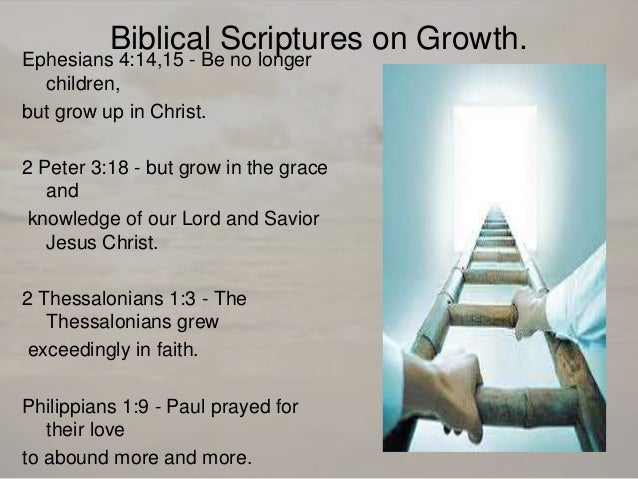 verses bible Be mature