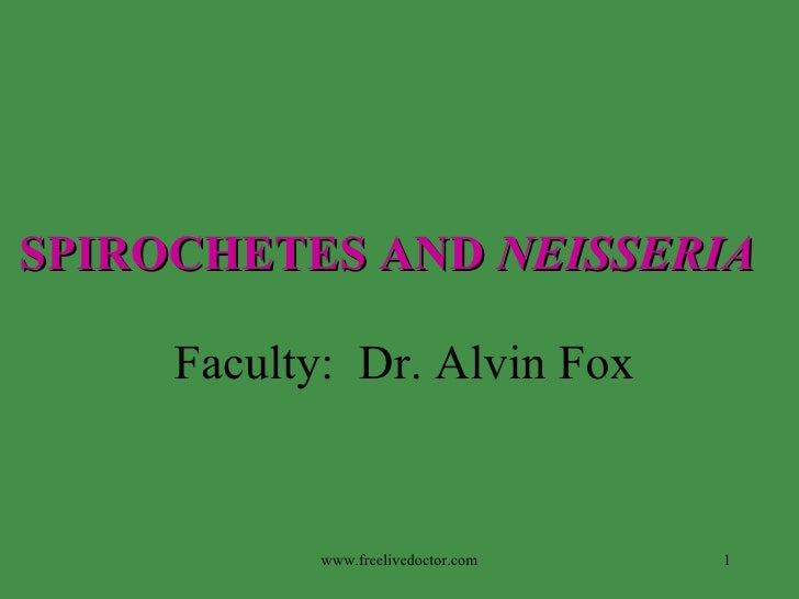 SPIROCHETES AND   NEISSERIA   Faculty:  Dr. Alvin Fox www.freelivedoctor.com