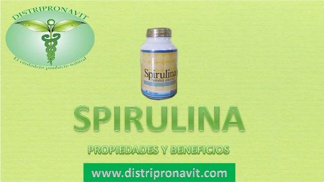 """La alga Spirulina es conocida como """"alimento de los dioses""""por sus propiedades nutritivas. Aporta Vigor y salud,fortifica ..."""