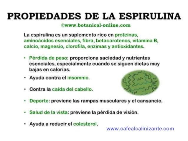 Alga Spirulina