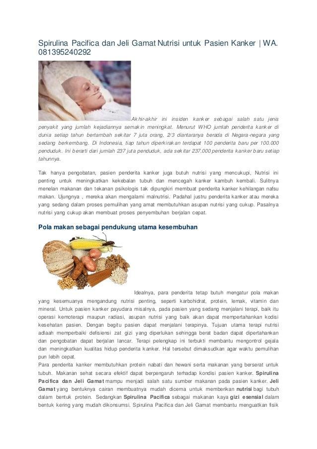 Spirulina Pacifica dan Jeli Gamat Nutrisi untuk Pasien Kanker | WA. 081395240292 Akhir-akhir ini insiden kanker sebagai sa...