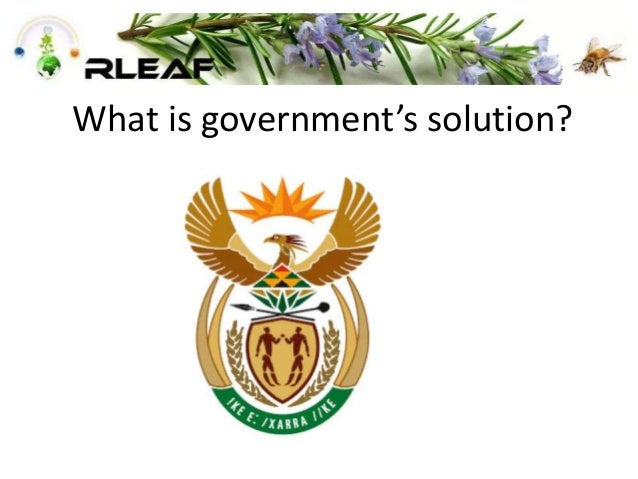 What is government's solution?