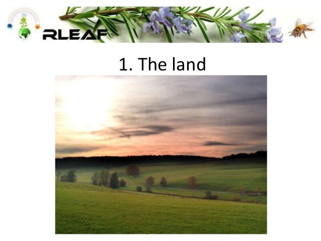 1. The land