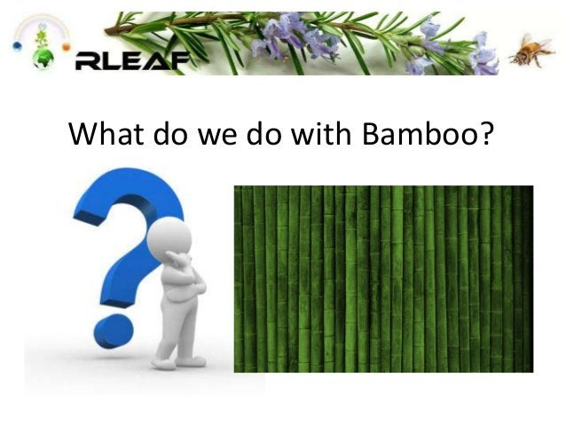 What do we do with Bamboo?