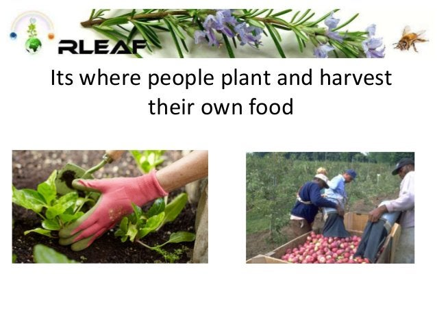 Its where people plant and harvest their own food
