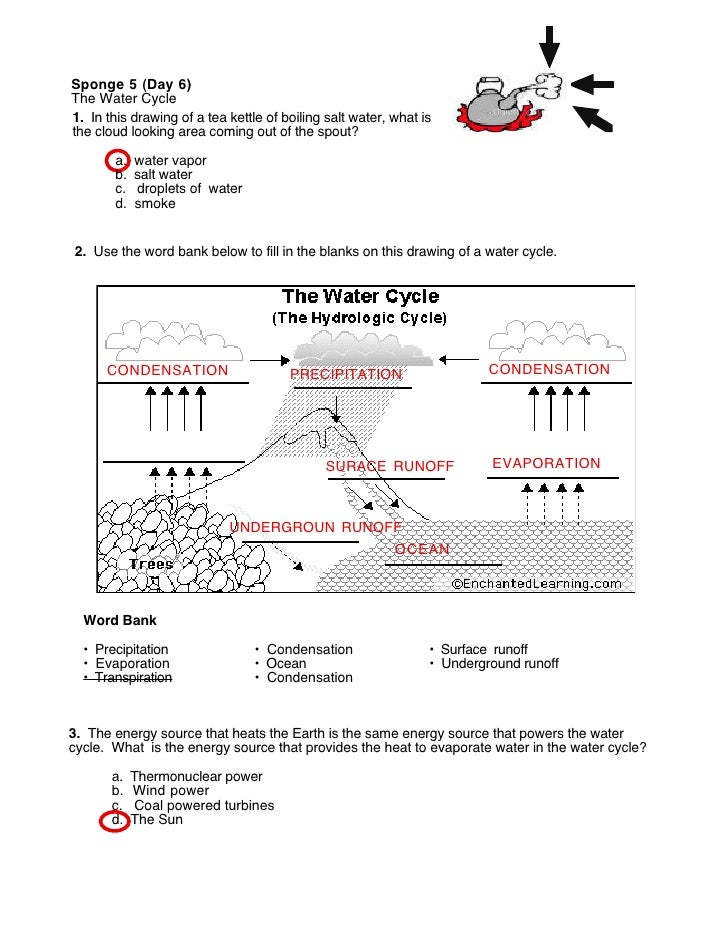 Water Cycle  Worksheet S     Answers