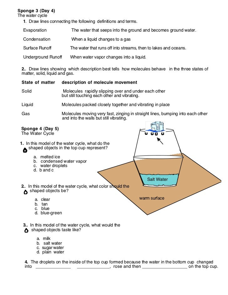 Water Cycle For Kindergarten Worksheets Fact About The Diagram ...
