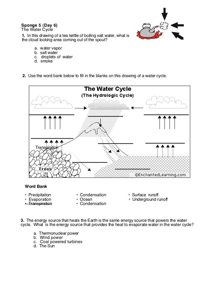 Water cycle (worksheet(s))