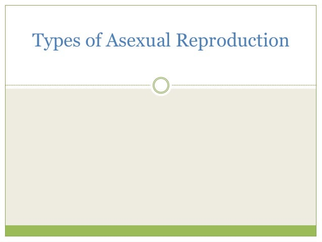 Sporogenesis asexual reproduction