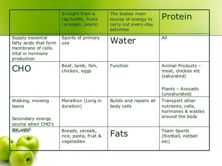 10+ Diet Plan Templates