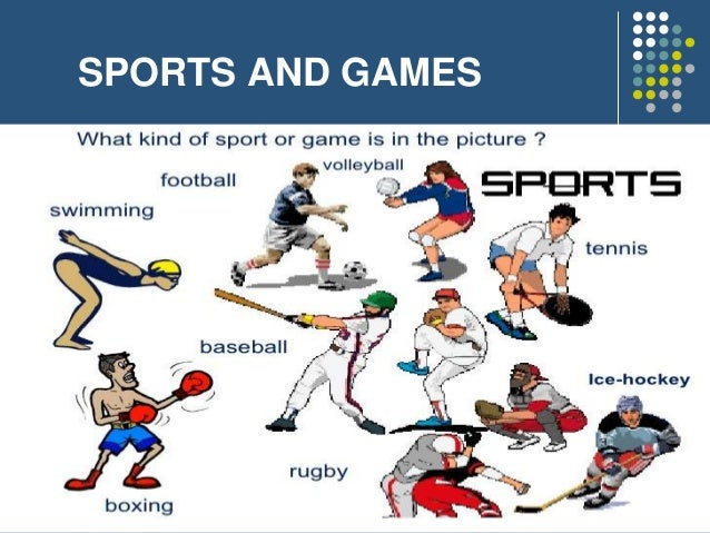 sport 1 games