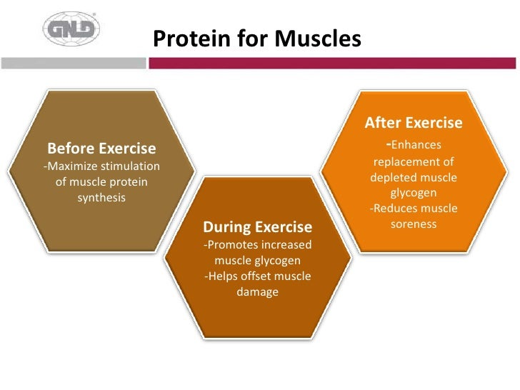 Protein for Muscles<br />Before Exercise<br />-Maximize stimulation of muscle protein synthesis<br />After Exercise <br />...