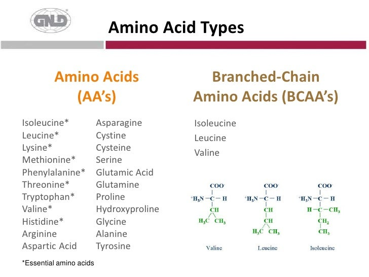 Amino Acid Types<br />Amino Acids(AA's)<br />Branched-Chain Amino Acids (BCAA's)<br />Asparagine<br />Cystine<br />Cystein...