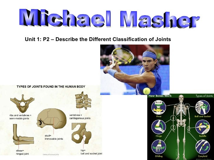Michael Masher Unit 1: P2 – Describe the Different Classification of Joints
