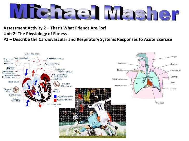 Michael Masher<br />Assessment Activity 2 – That's What Friends Are For!<br />Unit 2: The Physiology of Fitness<br />P2 – ...