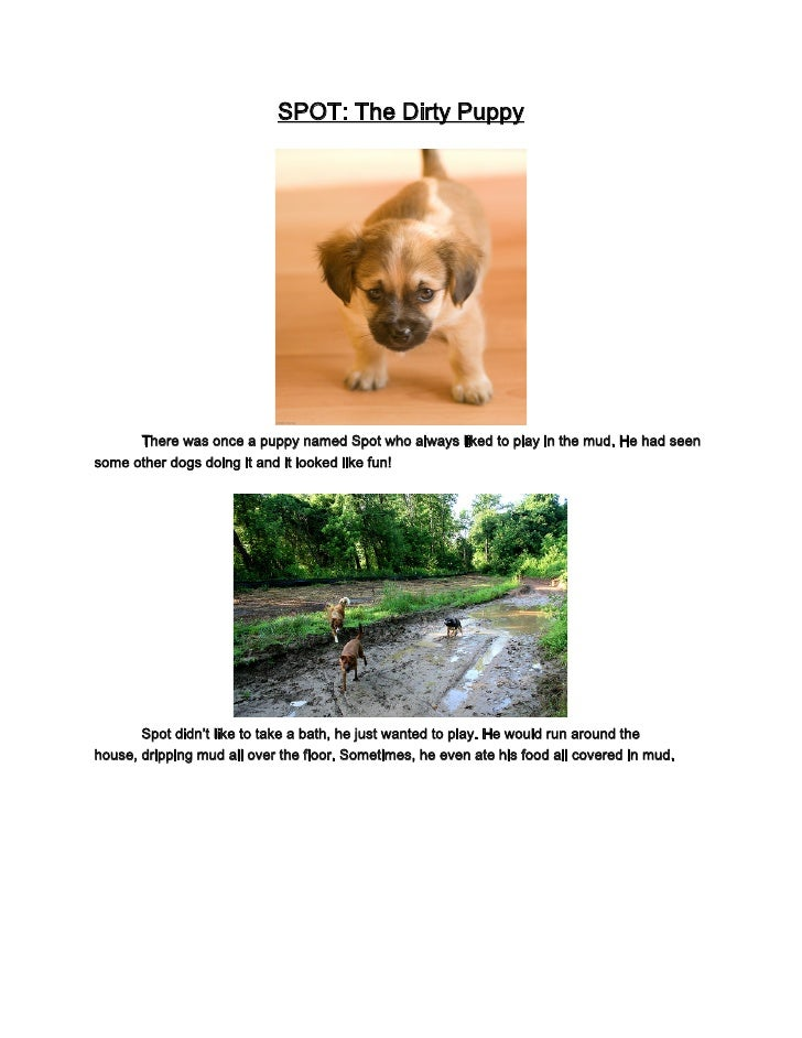 SPOT: The Dirty Puppy           There was once a puppy named Spot who always liked to play in the mud. He had seen some ot...
