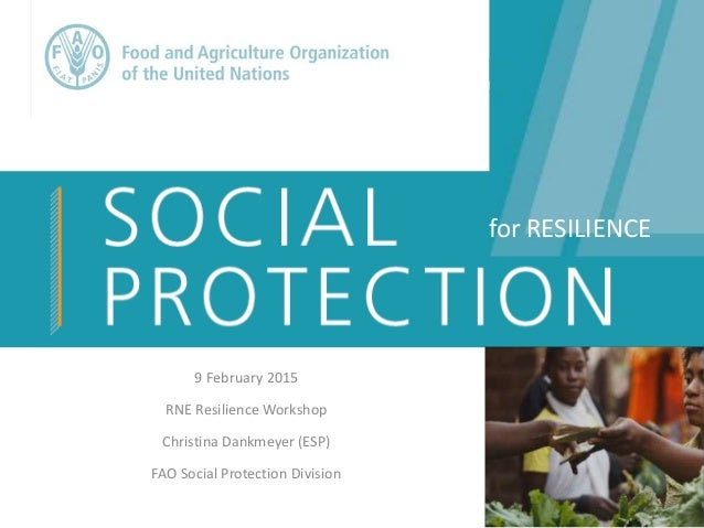 9 February 2015 RNE Resilience Workshop Christina Dankmeyer (ESP) FAO Social Protection Division for RESILIENCE