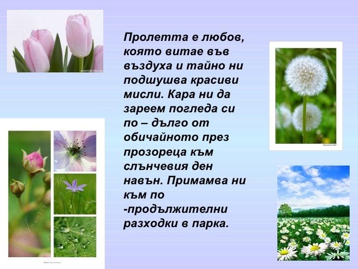 Пролетта е любов, която витае във въздуха и тайно ни подшушва красиви мисли. Кара ни да зареем погледа си по – дълго от об...