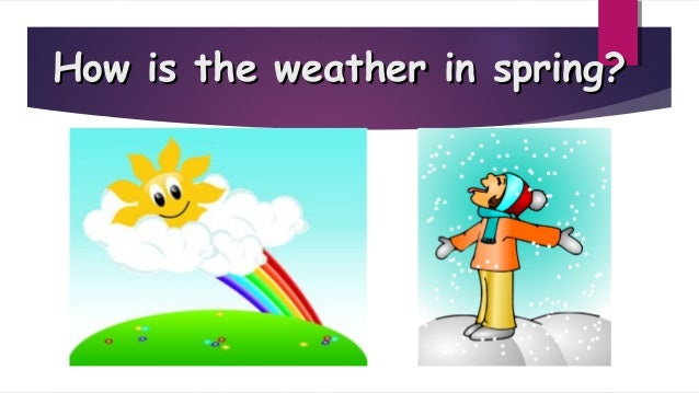 Spring grade 1 Slide 3