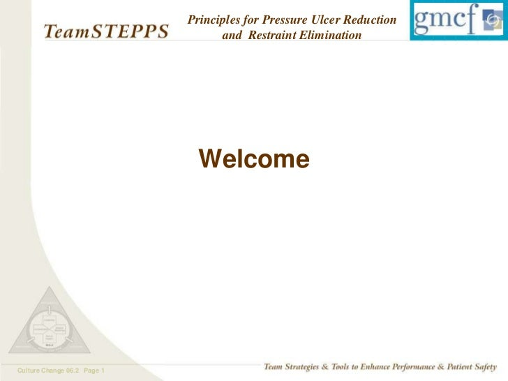 Principles for Pressure Ulcer Reduction                                   and Restraint Elimination                       ...