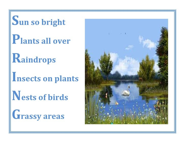 Sun so brightPlants all overRaindropsInsects on plantsNests of birdsGrassy areas