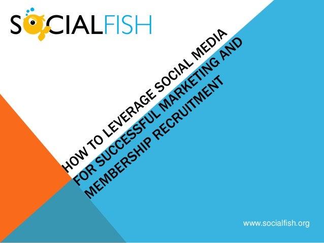 www.socialfish.org