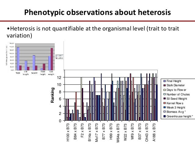 correlation of phenotypic traits in maize different hybrids Several phenotypic traits were  heritability for hybrids ww low correlation between genomic  of maize (zea mays l) in the field at different.