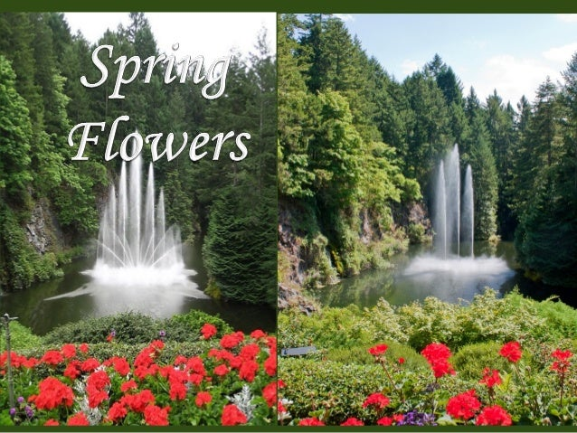 spring-and-holi-festiva