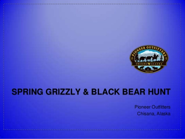 SPRING GRIZZLY & BLACK BEAR HUNT Pioneer Outfitters Chisana, Alaska