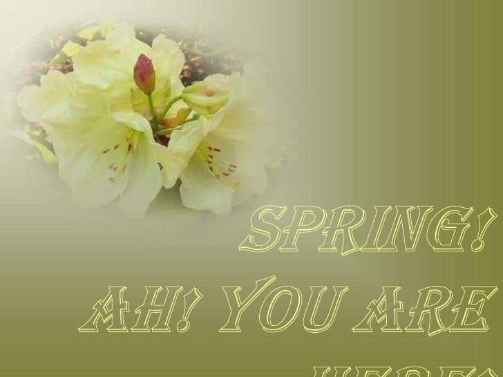 Spring!<br />Ah! You are here!<br />