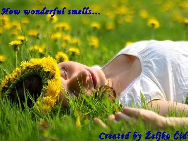 How wonderful smells…   Created by Željko Čidić