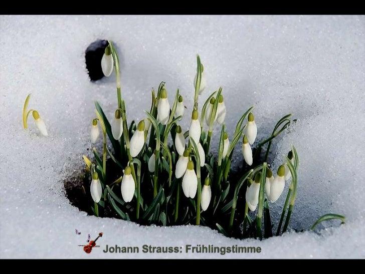 Johann Strauss: Frühlingstimme<br />