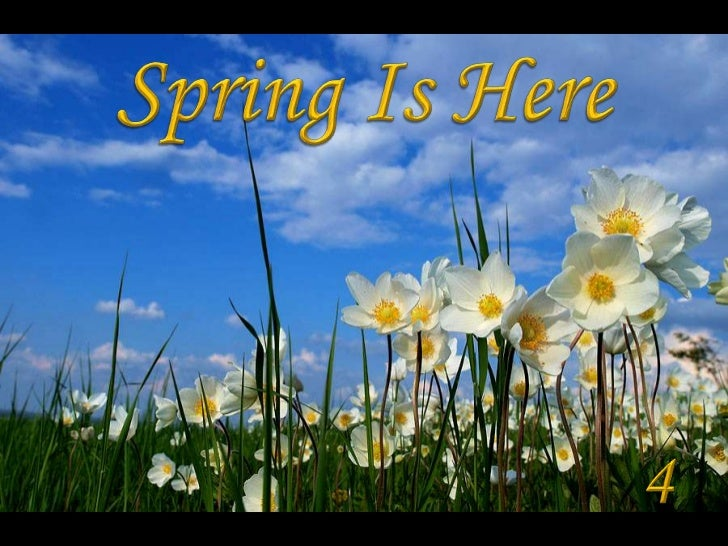 Spring Is Here<br />4<br />